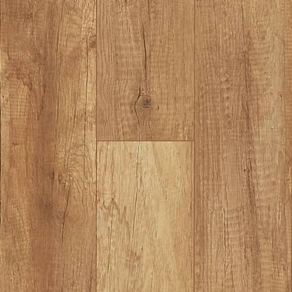 8mm Harvest Wheat Oak Laminate Flooring 5.59 in. Wide x 51.57 in. Long