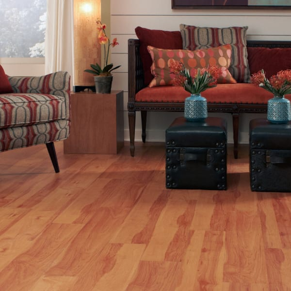 Mount Craig Cherry Self Stick Luxury Vinyl Plank Flooring in Living Room