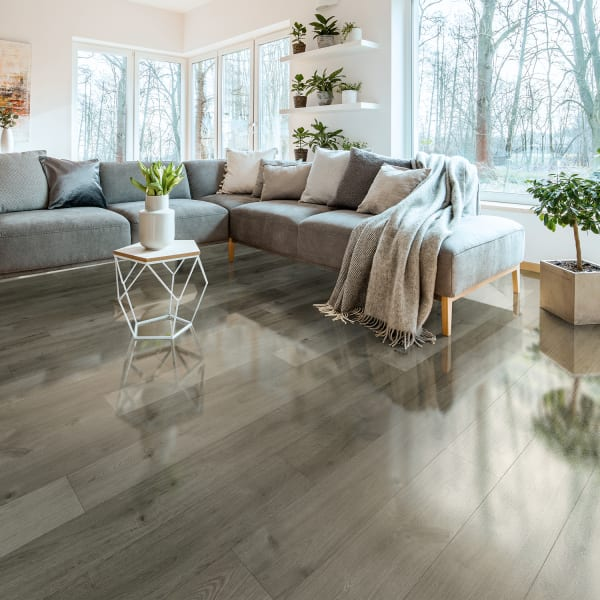 10mm Stockholm Silver Oak High Gloss Laminate Flooring in costal contemporary living room