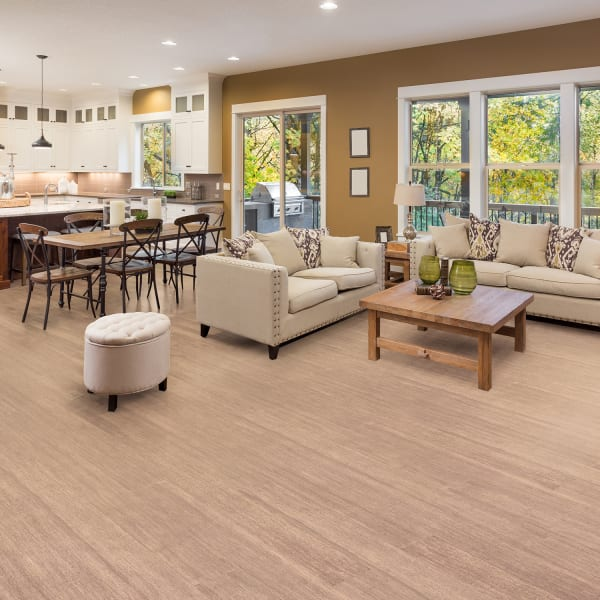 Dove Springs Engineered Bamboo Flooring in Living Room and Kitchen