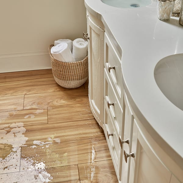 Desert Horizon Elm Laminate Flooring in Bathroom