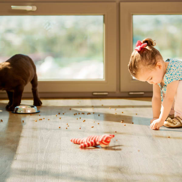 Messy Toddler and Puppy on Dewy Meadow Oak Vinyl