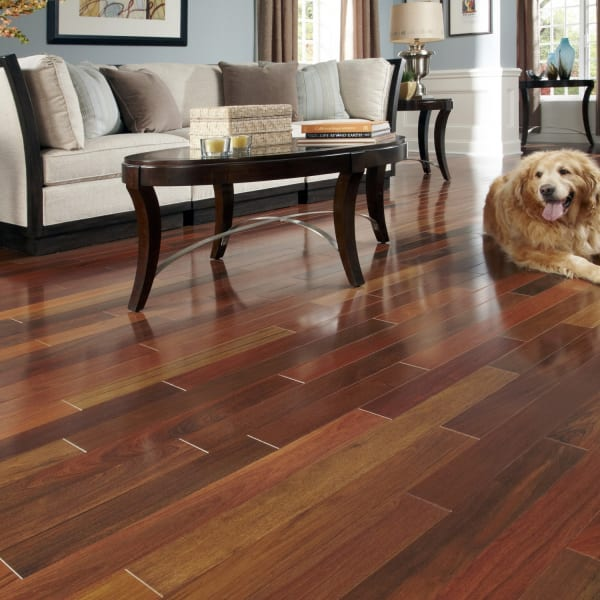 Brazilian Walnut Solid Hardwood Flooring in Living Room and Dining Room